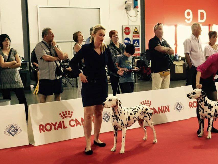 More World Show Results!